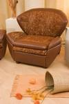 Мягкая мебель «Дельта»